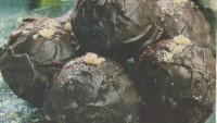 Çikotop
