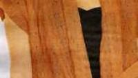 Kiremit Rengi Kuşaklı Bayan Hırka Modeli