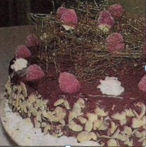 Melek Saçlı Kuş Yuvası Pastası