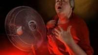 Sıcak Basmaları ve Gece Terlemeleri