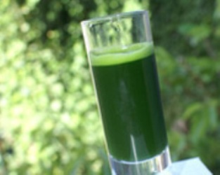 Yeşil Şifa